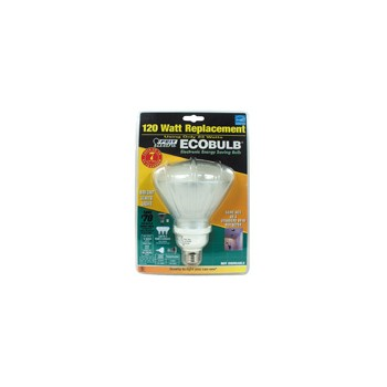Compact Fluorescent Floodlight, 23 Watt