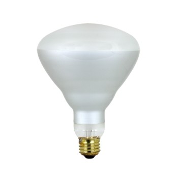 Floodlight, Spot 120 Volt 65 Watt