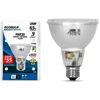 Flood, Compact Fluorescent In/Outdoor ~ 13W