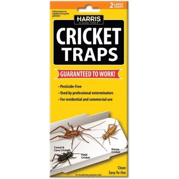 Cricket Traps,  All Natural ~ Pack of 2