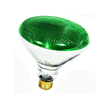 Colored Floodlight, Green 120 Volt 100 Watt