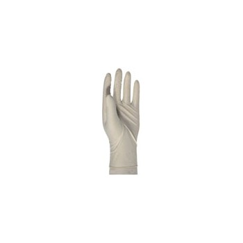 Latex Gloves - Disposable - 10 pack
