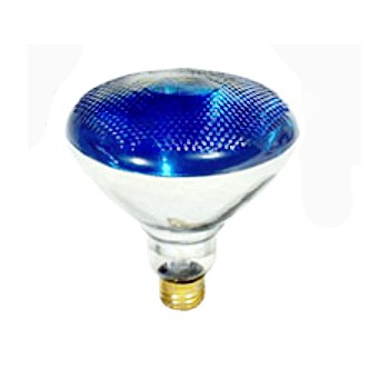 Colored Floodlight, Blue 120 Volt 100 Watt
