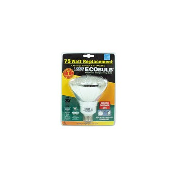 Compact Fluorescent Floodlight, 18 Watt