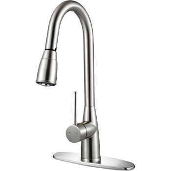 Gooseneck Kitchen Faucet ~ Brushed Nickel