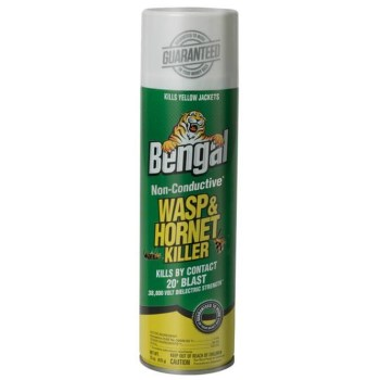 15oz Wasp/Hornet Killer