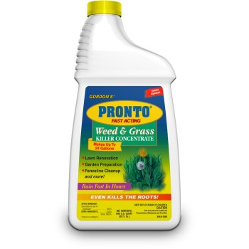 Weed/Grass Killer Concentrate, Quart
