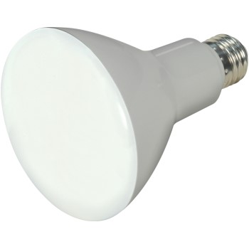 Satco Products S9620 Led Br Led Bulb S9620
