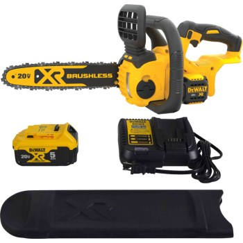 20v 12in. Chainsaw Kit