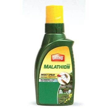Insect Spray, Malathion ~ 32 oz.