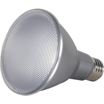 Satco Products S9431 Led Par Led Bulb