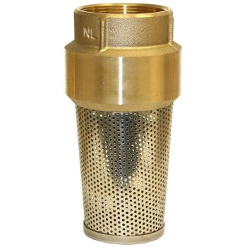 2in. Brass Foot Valve