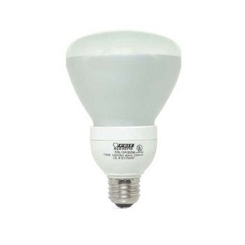 Compact Fluorescent Floodlight, Dimmable 15 Watt