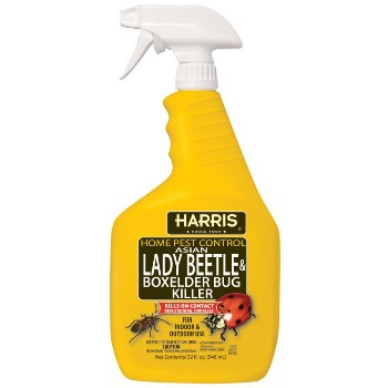 Lady Beetle & Boxelder Killer ~ 32 Ounce