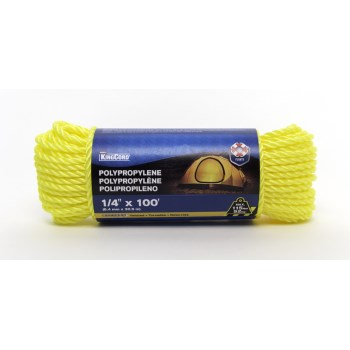 1/4in. X100ft. Tw Poly Rope
