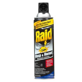 Raid Wasp & Hornet Spray ~ 17.5 oz Spray