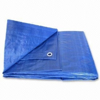 Tarp, Multiple Use Blue 6' x 8'