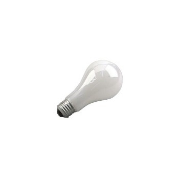 Rough Service Bulb, 100 watt