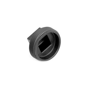 Threaded Plug, 2 inch