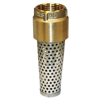 Brass Foot Valve ~ 1""