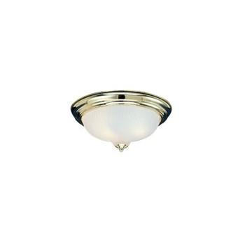 2 Light Ceiling Light Fixture, Flush Mount