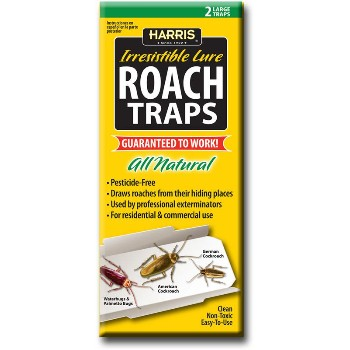 Roach Glue Trap 2 pack