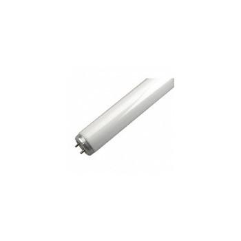 GE 10183 Fluorescent Bulb, T12