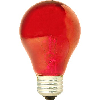 Party Light Bulb, 25w ~  Red