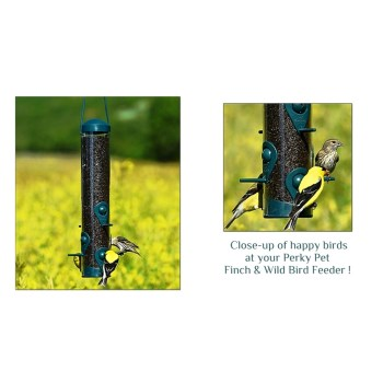PerkyPet Brand Bird Feeder, Sierra Design for Finch & Wild Birds ~ 1.8 lb Seed Capacity