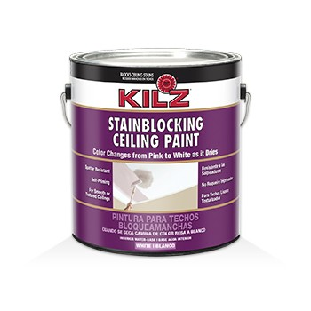 Ceiling Paint - Stain Blocking - 1 Gallon