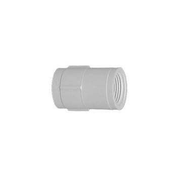 PVC Threaded Coupling, 3/4 inch