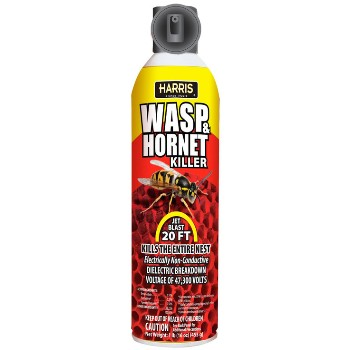 Wasp & Hornet Foam Spray ~ 16oz.