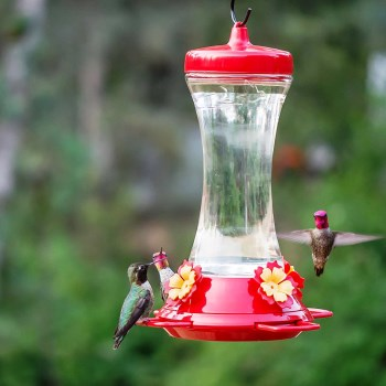 Perky Pet Glass Hummingbird Feeder,  4 Ports  ~ 20 oz Capacity