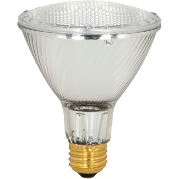 Halogen Par Light Bulb