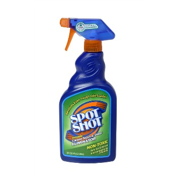Carpet Stain & Odor Eliminator ~ Spray, 22 oz