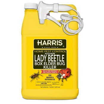 Lady Beetle &  Boxelder Bug Killer ~ Gallon