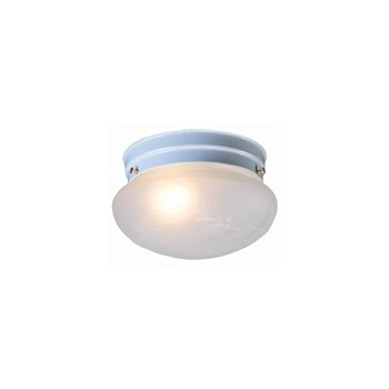 Ceiling Light Fixture, White