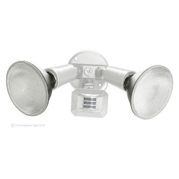 Dbl Wh Adj Floodlight