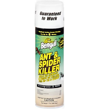 Ant & Spider Killer ~ 17oz Spray Can